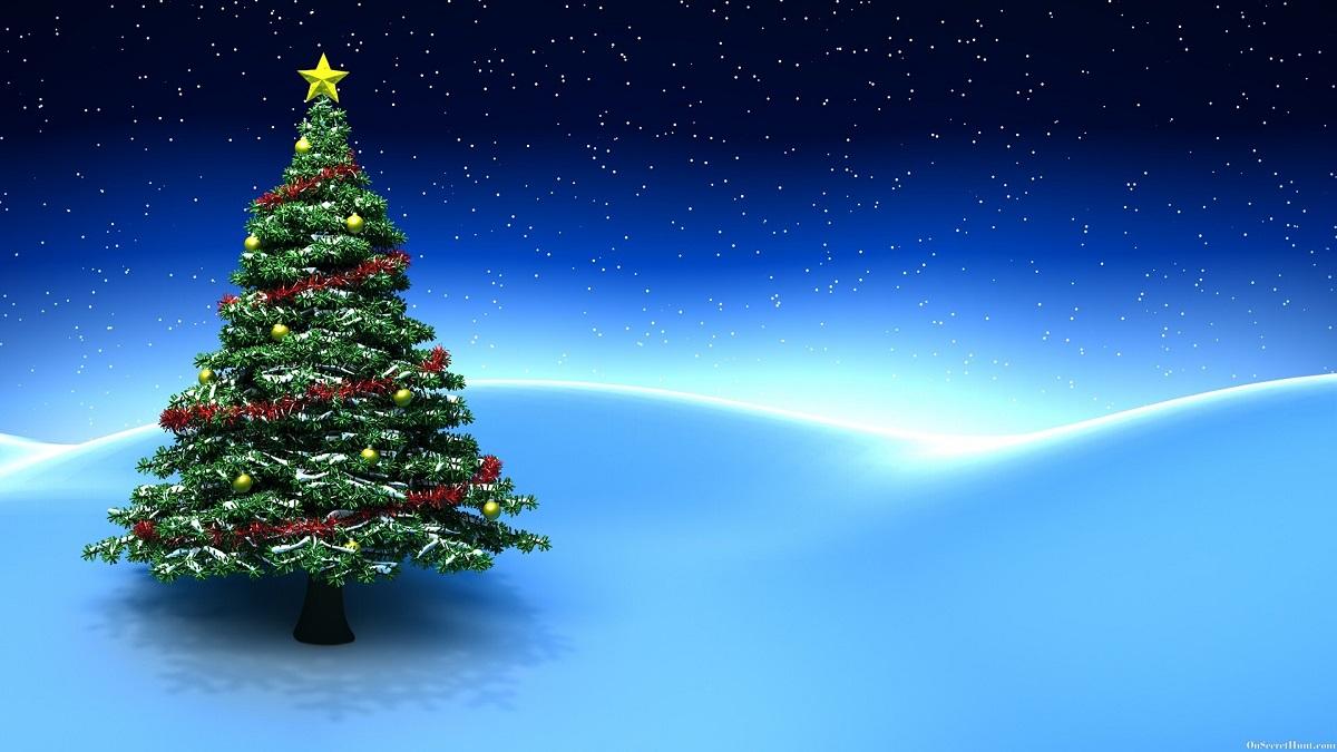 Arbol De Navidad Fondos De Pantalla En Hd Gratis Club De Tiro Con